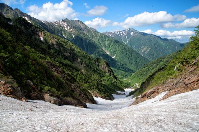新緑期の針ノ木大雪渓(日本三大雪渓)の写真