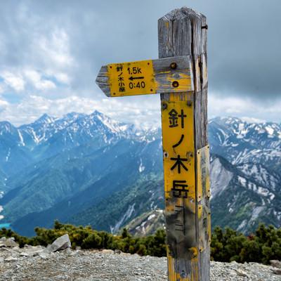 針ノ木岳山頂にある山頂標(北アルプス)の写真