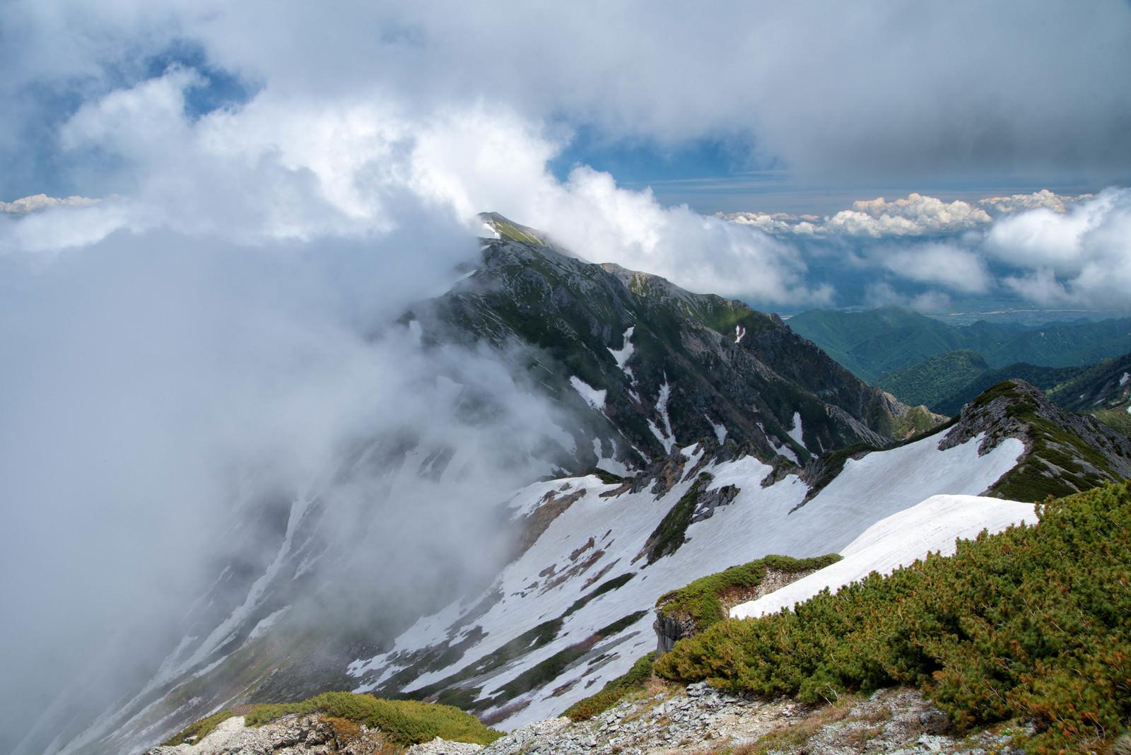 「雲かかる新緑の蓮華岳(北アルプス)」の写真