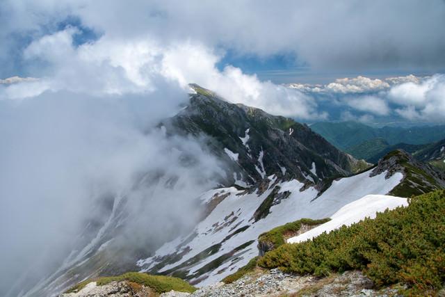 雲かかる新緑の蓮華岳(北アルプス)の写真