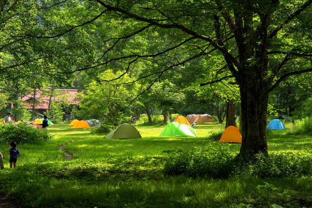 リーサイトに立つテント(徳澤キャンプ場)の写真