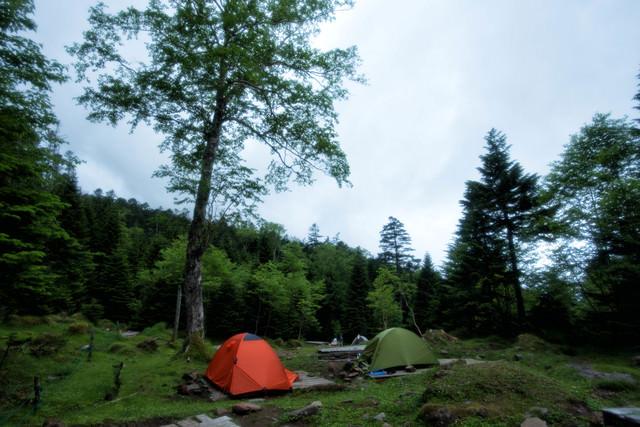 オーレン小屋のテント場に立つテント(八ヶ岳)の写真
