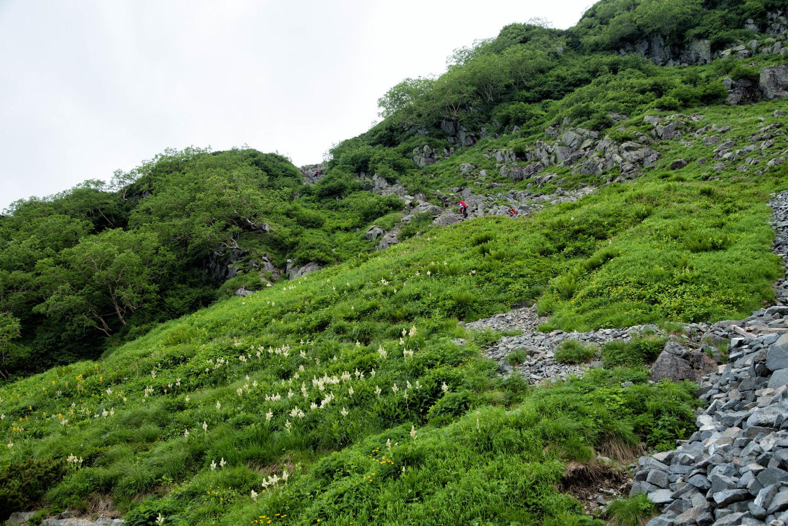 「北穂高南陵へ取り付く登山者」の写真