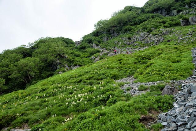 北穂高南陵へ取り付く登山者の写真