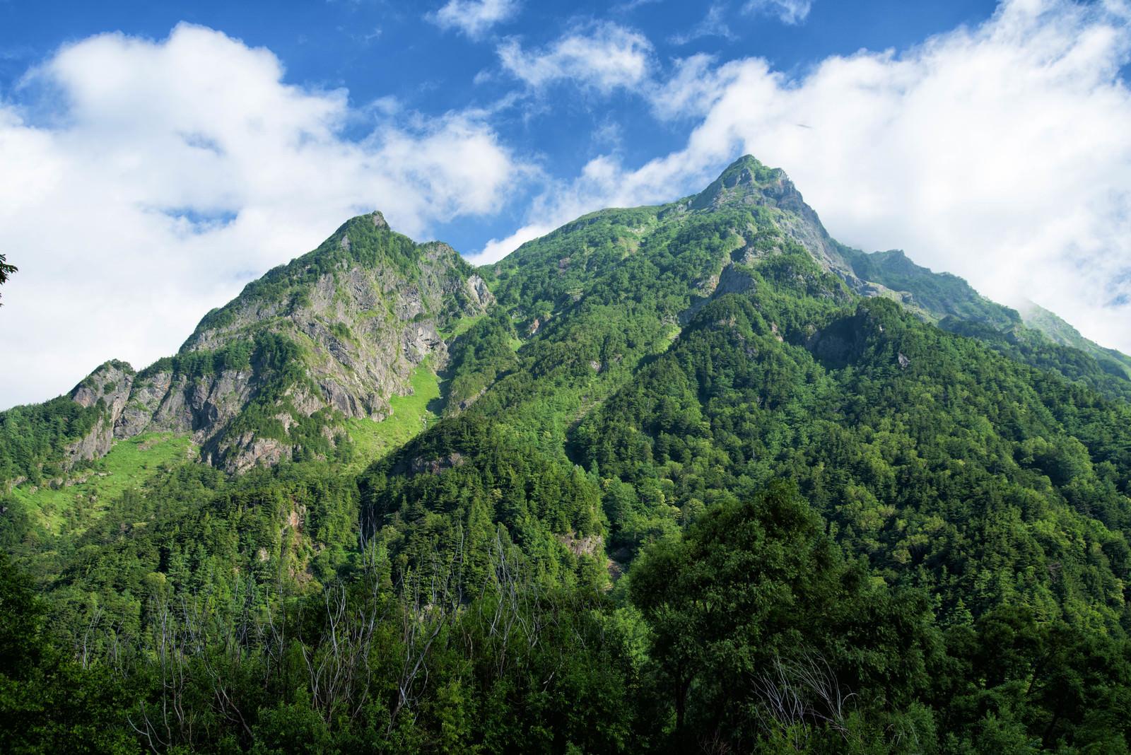 「夏季の明神岳」の写真