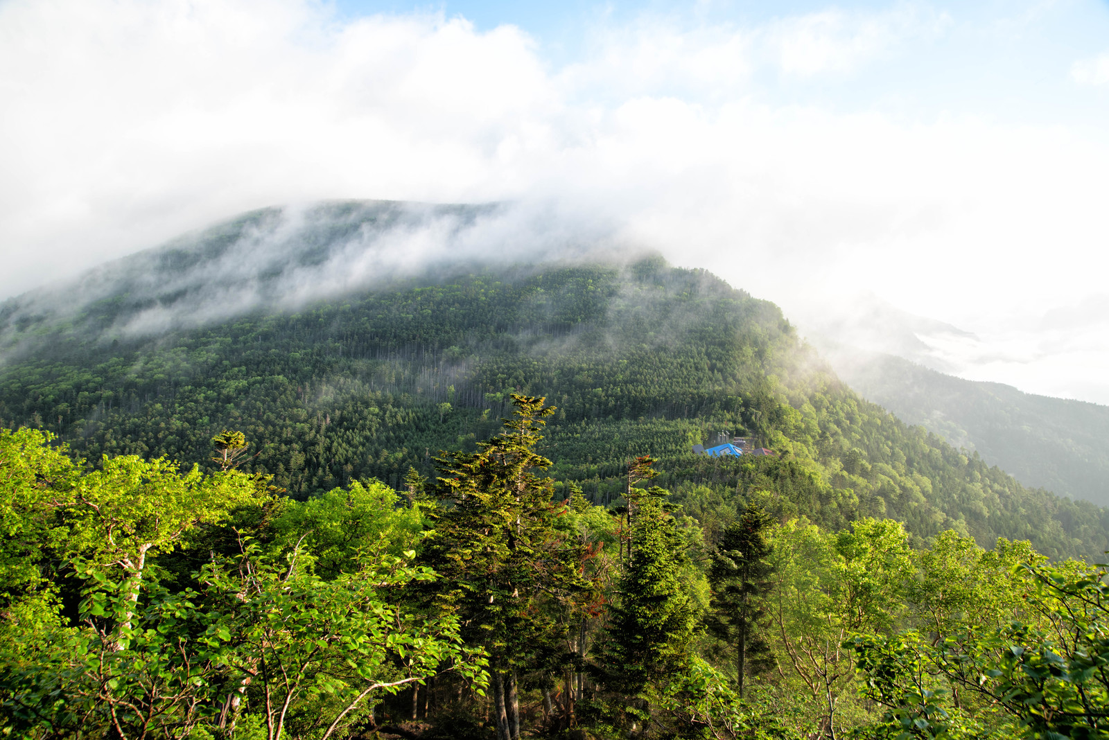 「霧に包まれた八ヶ岳の森と本沢温泉」の写真