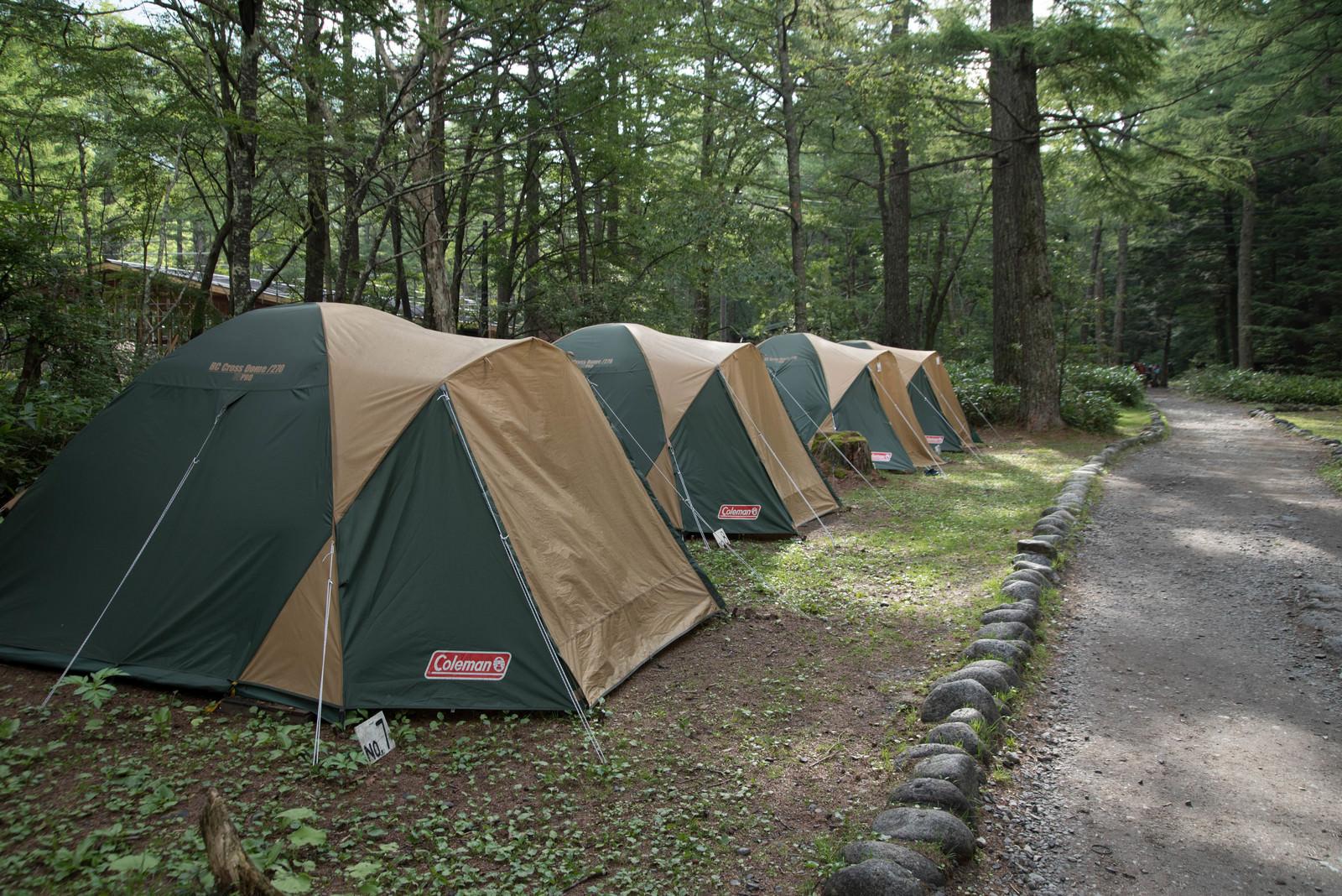「道の脇に並ぶコールマンのレンタルテント(小梨平キャンプ場)」の写真