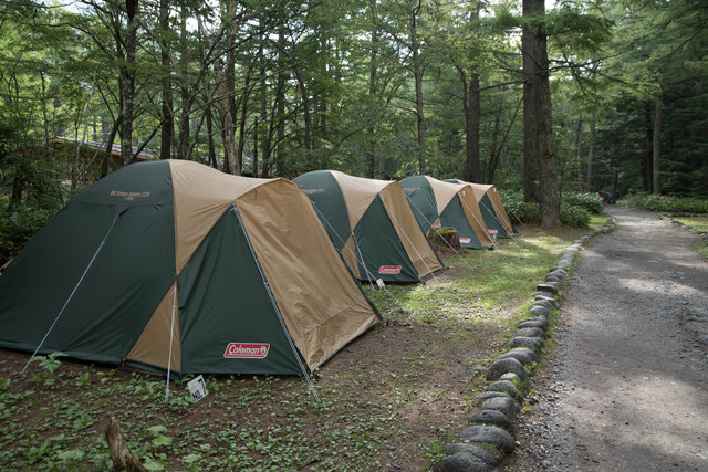 道の脇に並ぶコールマンのレンタルテント(小梨平キャンプ場)の写真