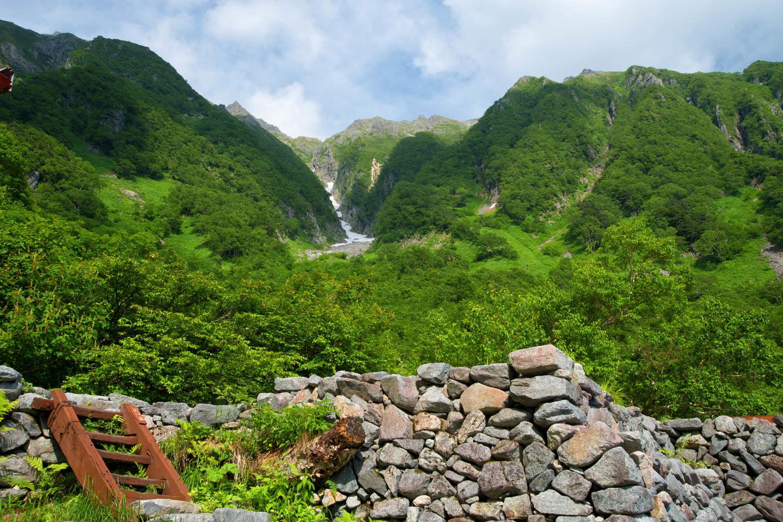 「岳沢山荘から見上げる新緑の吊尾根(上高地)」の写真