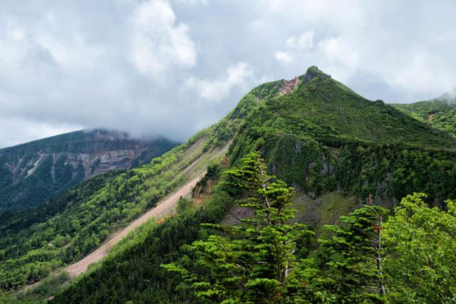 新緑に覆われた東天狗岳と曇り空(八ヶ岳連峰)の写真