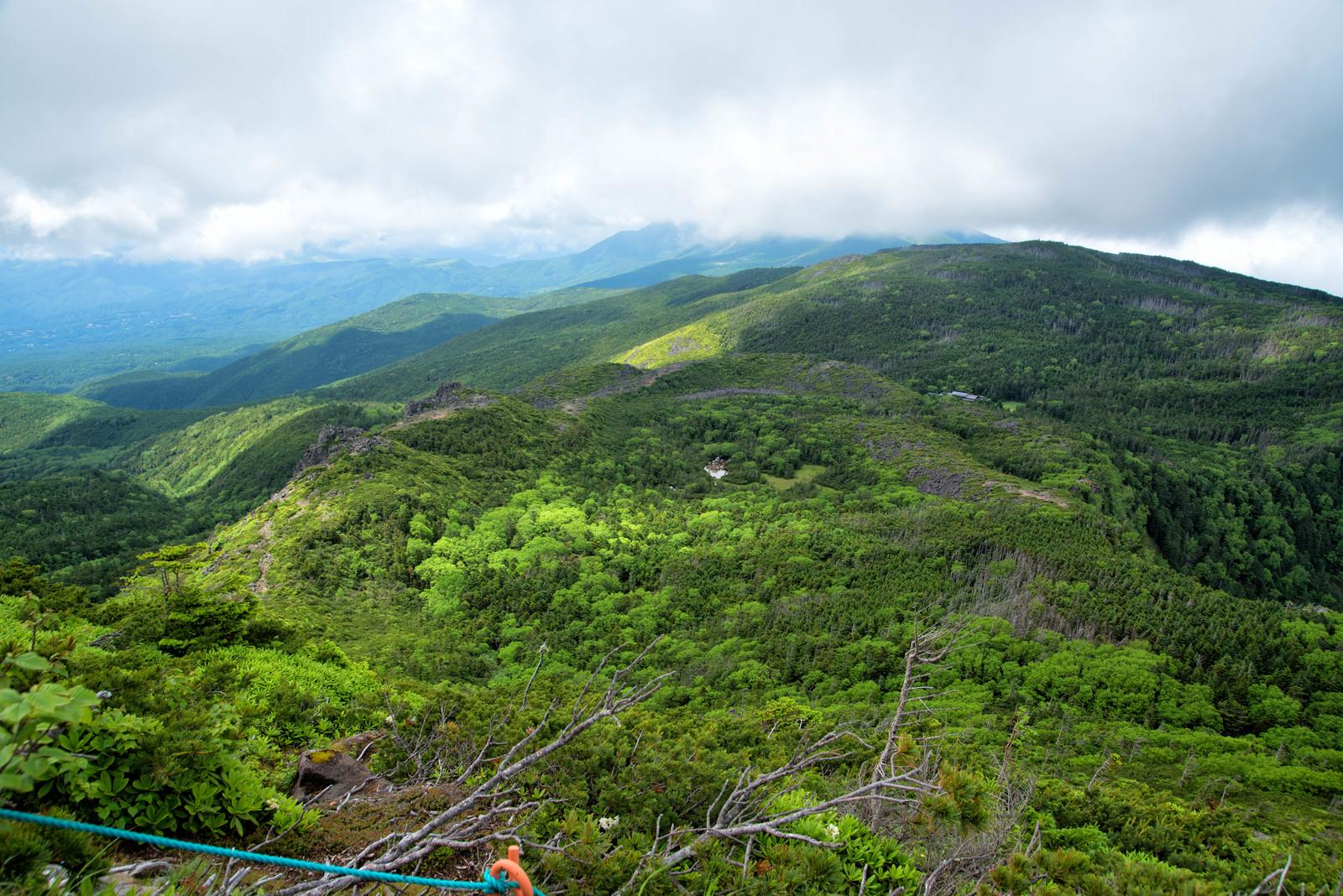 「東天狗岳山頂から俯瞰した北八ヶ岳の森」の写真