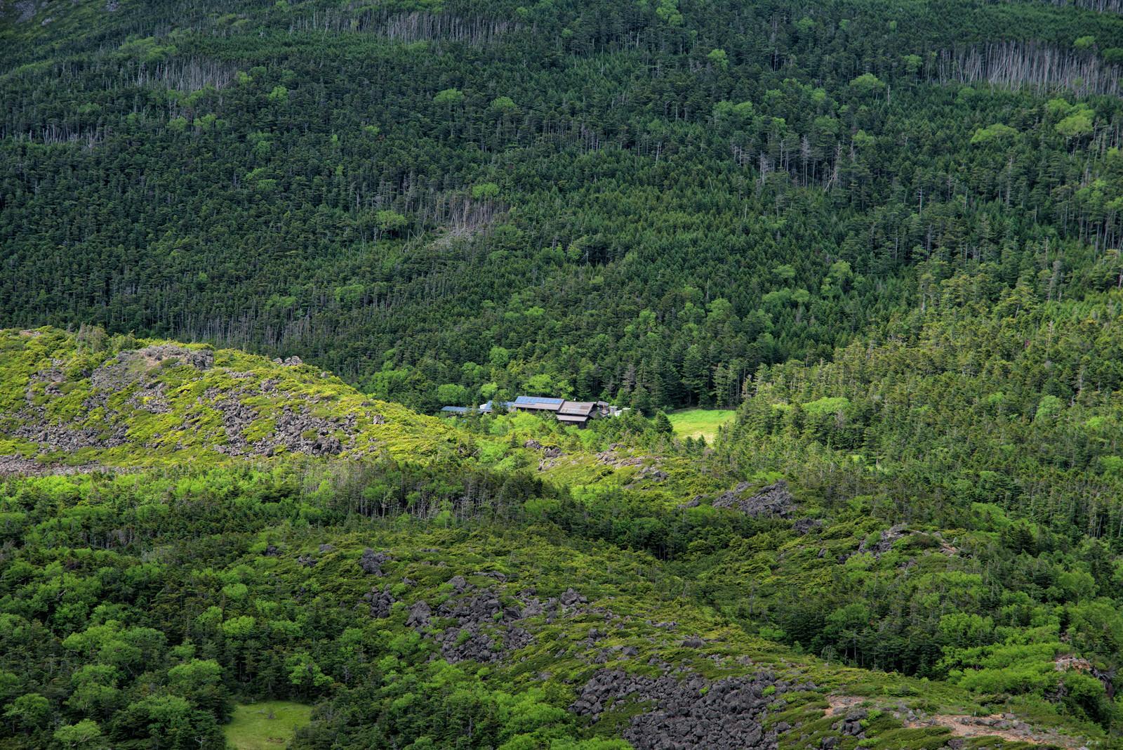 「森に囲まれひっそりと佇む黒百合ヒュッテ(山小屋)」の写真