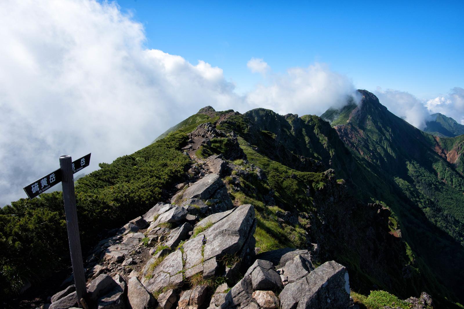 「横岳から赤岳へ繋がる縦走路(八ヶ岳)」の写真