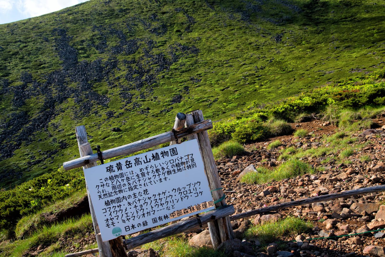 「硫黄岳高山植物園の看板」の写真