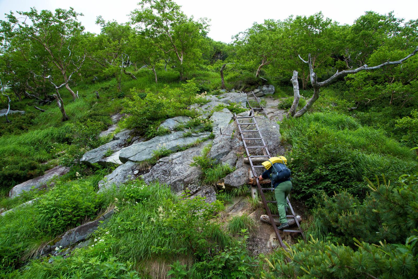 「重太郎新道の梯子場に挑む登山者」の写真