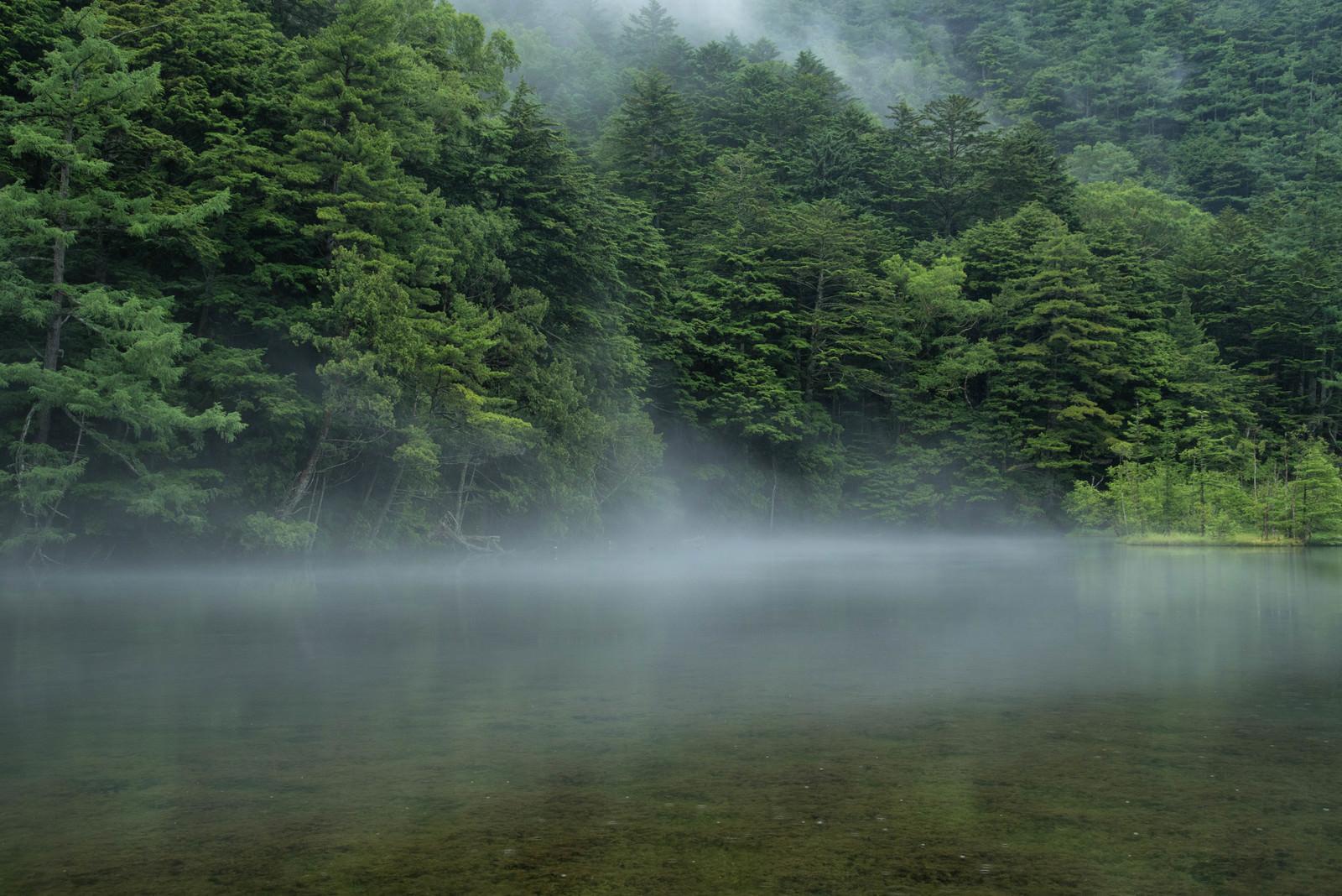 「霧が掛かり始める明神池(上高地) | 写真の無料素材・フリー素材 - ぱくたそ」の写真