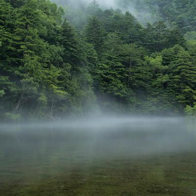 霧が掛かり始める明神池(上高地)の写真