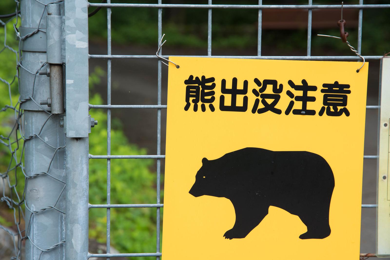 「熊出没注意の黄色い警告板」の写真