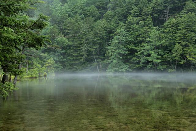 霧がかる明神池のリフレクション(上高地)の写真