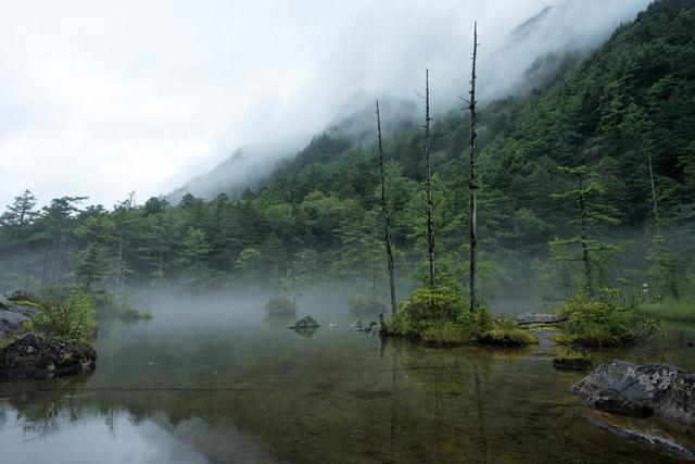 靄に包まれる明神池(上高地)の写真