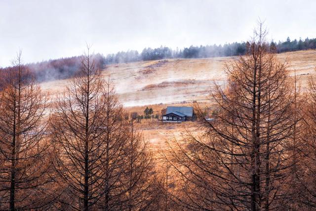 沸き立つ朝霧と車山高原の一軒家の写真