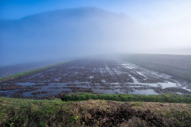 朝霧の棚田の写真