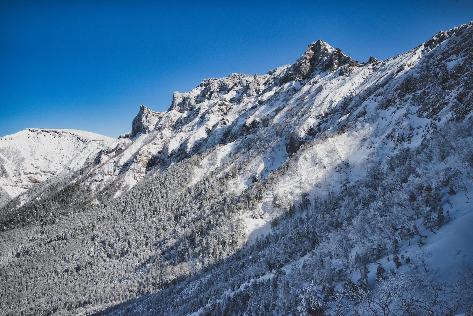 「厳冬の横岳(南八ヶ岳連峰)」の写真