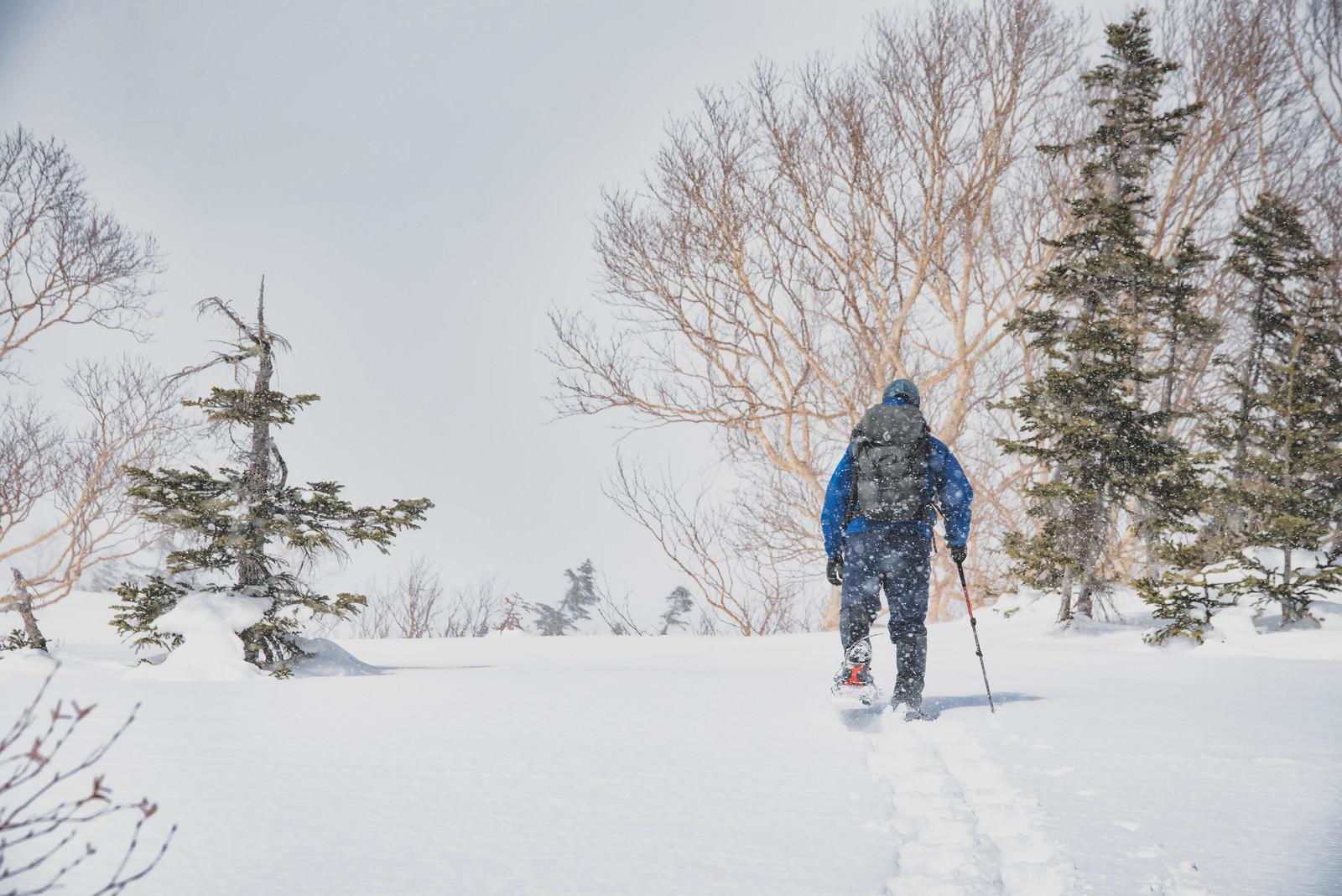 「スノートレッキング中の登山者」の写真