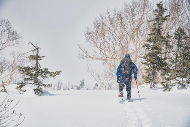 スノートレッキング中の登山者の写真