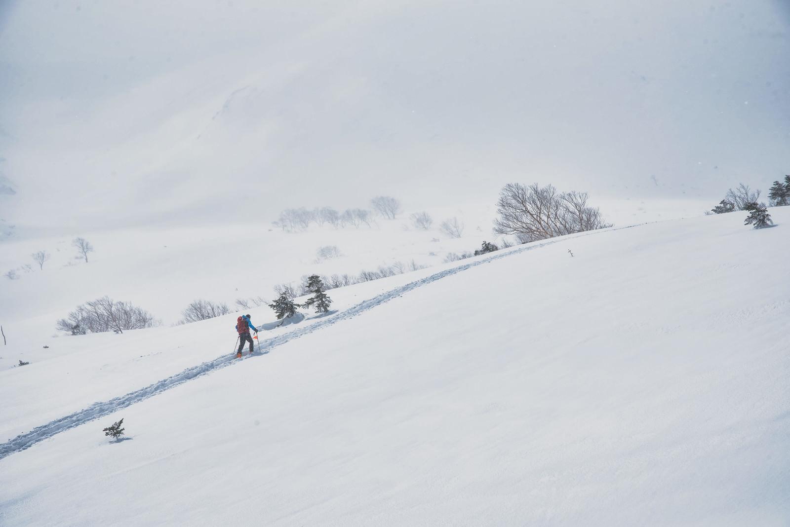 「雪山のトレースに沿って進む登山者」の写真