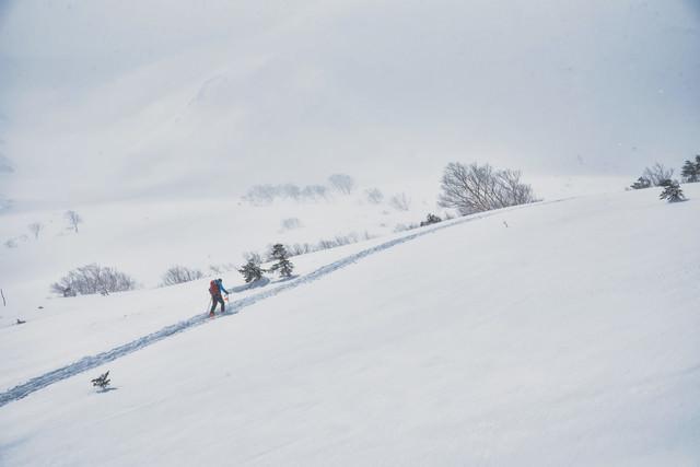 雪山のトレースに沿って進む登山者の写真