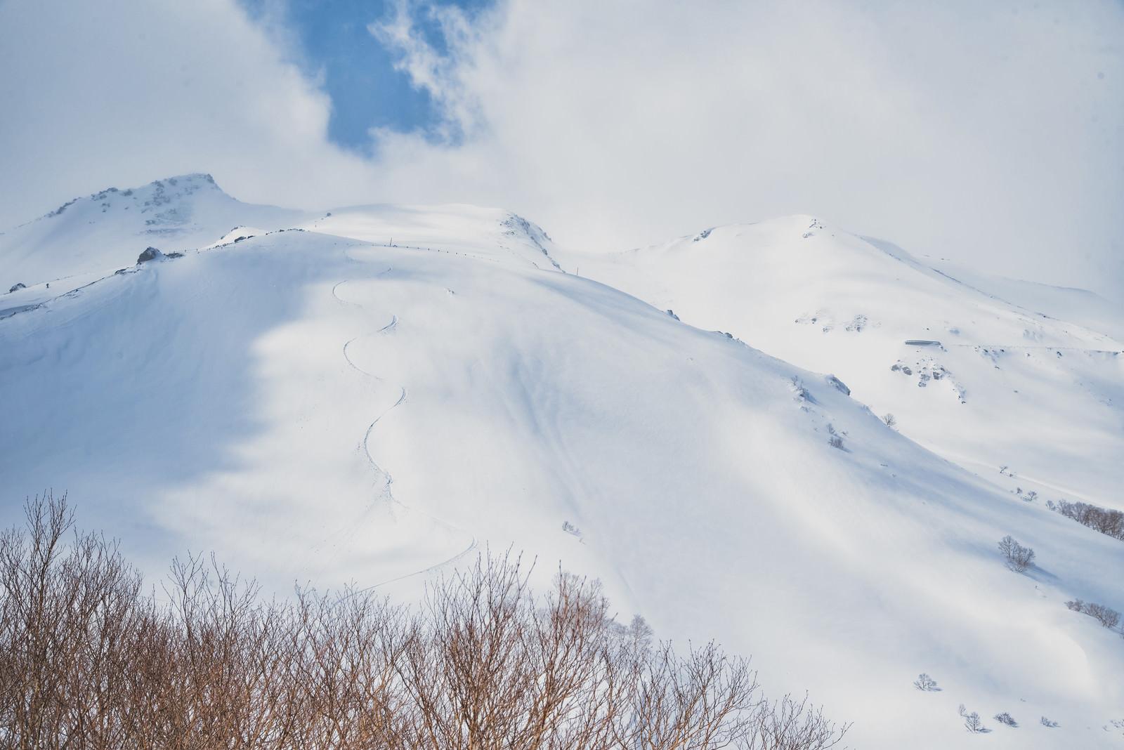 「バックカントリースキーヤーの滑った跡(乗鞍高原)」の写真