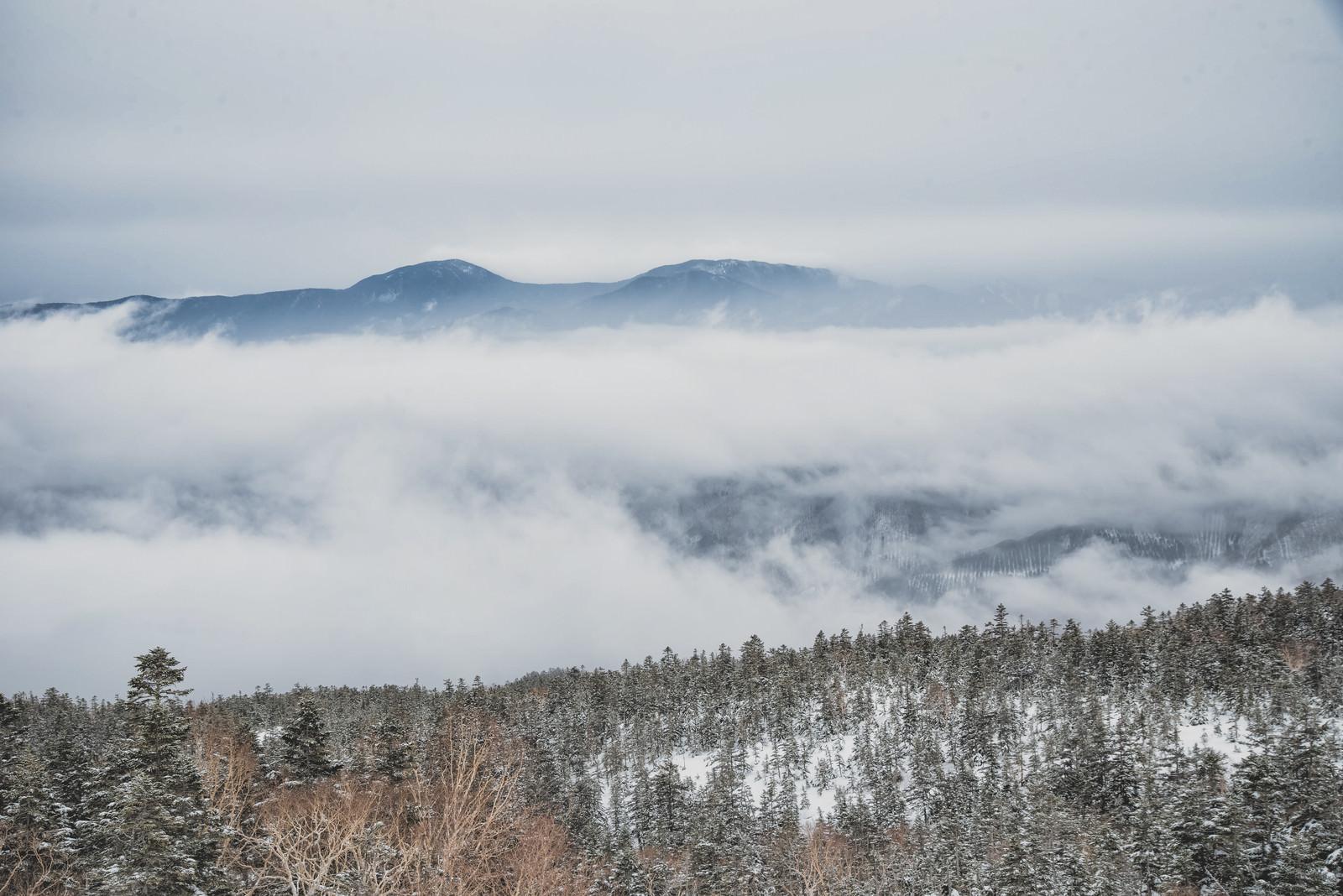 「雲の上に顔を出す山々」の写真
