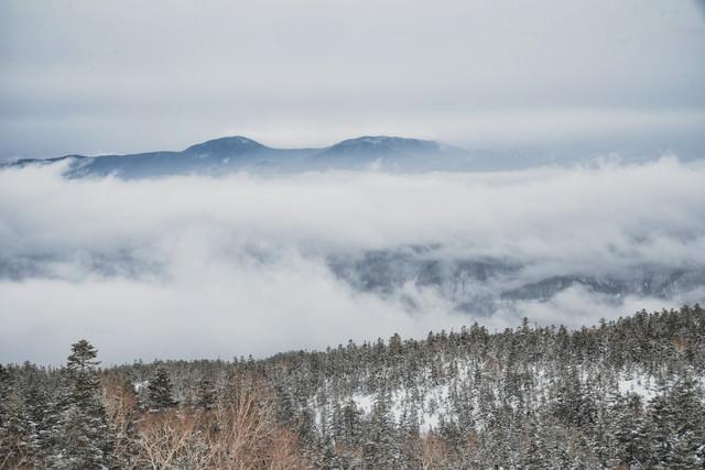 雲の上に顔を出す山々の写真