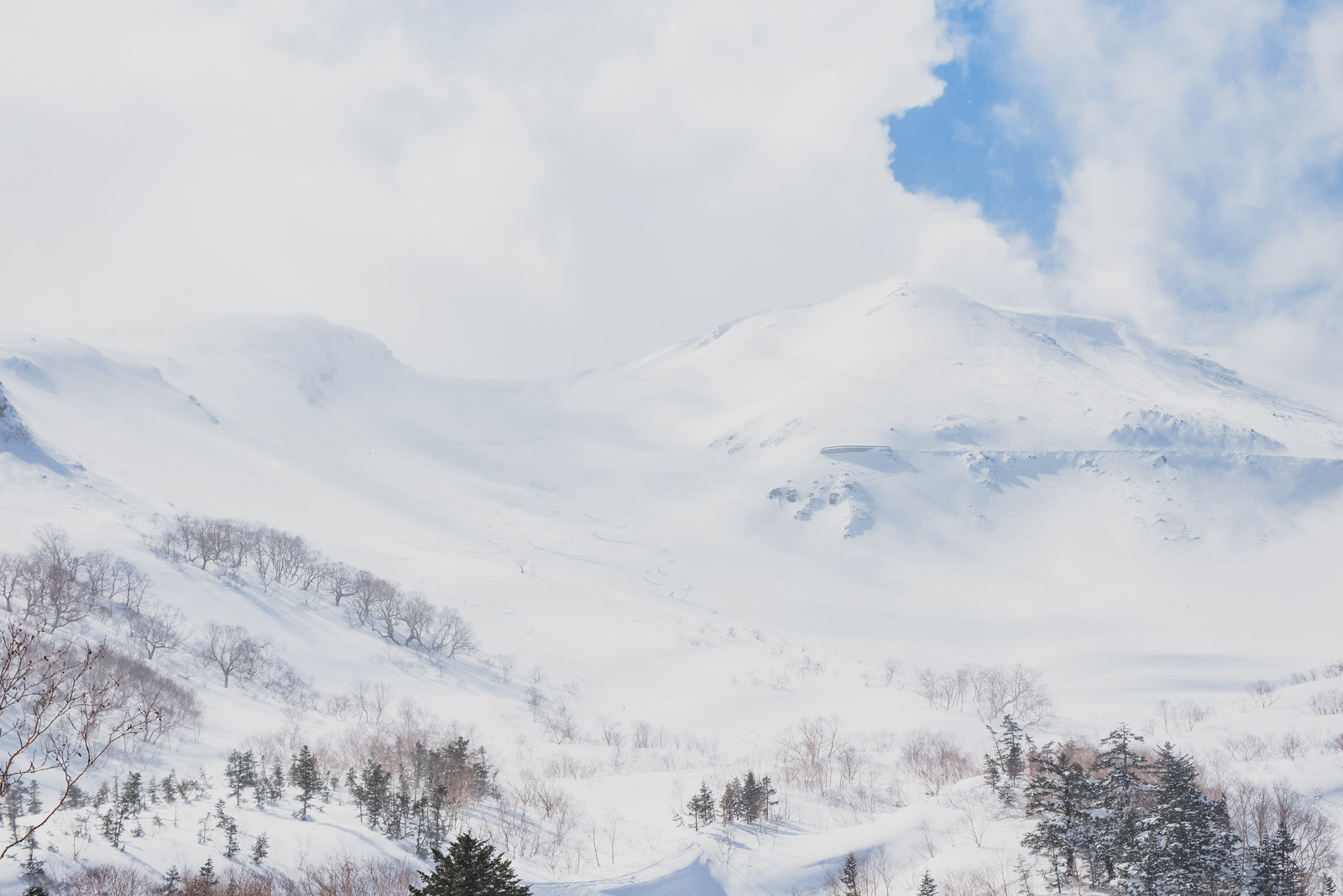 「乗鞍高原に積もる雪と沸き立つ雲(北アルプス)」の写真