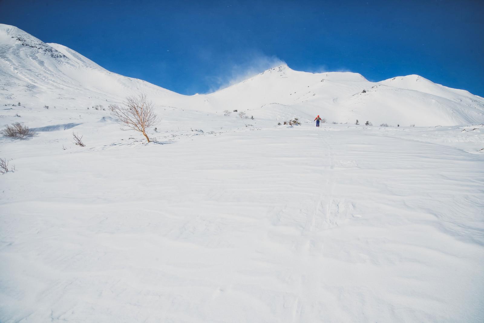 「乗鞍高原を踏破するバックカントリースキーヤー(北アルプス)」の写真