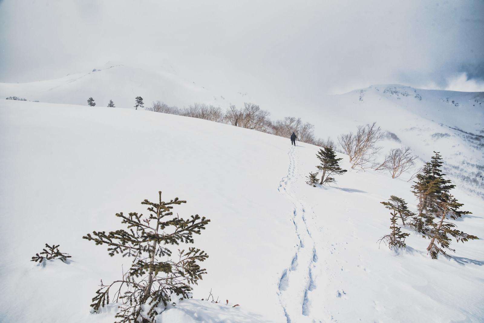 「厳冬の雪原へ向かう登山者の足跡」の写真