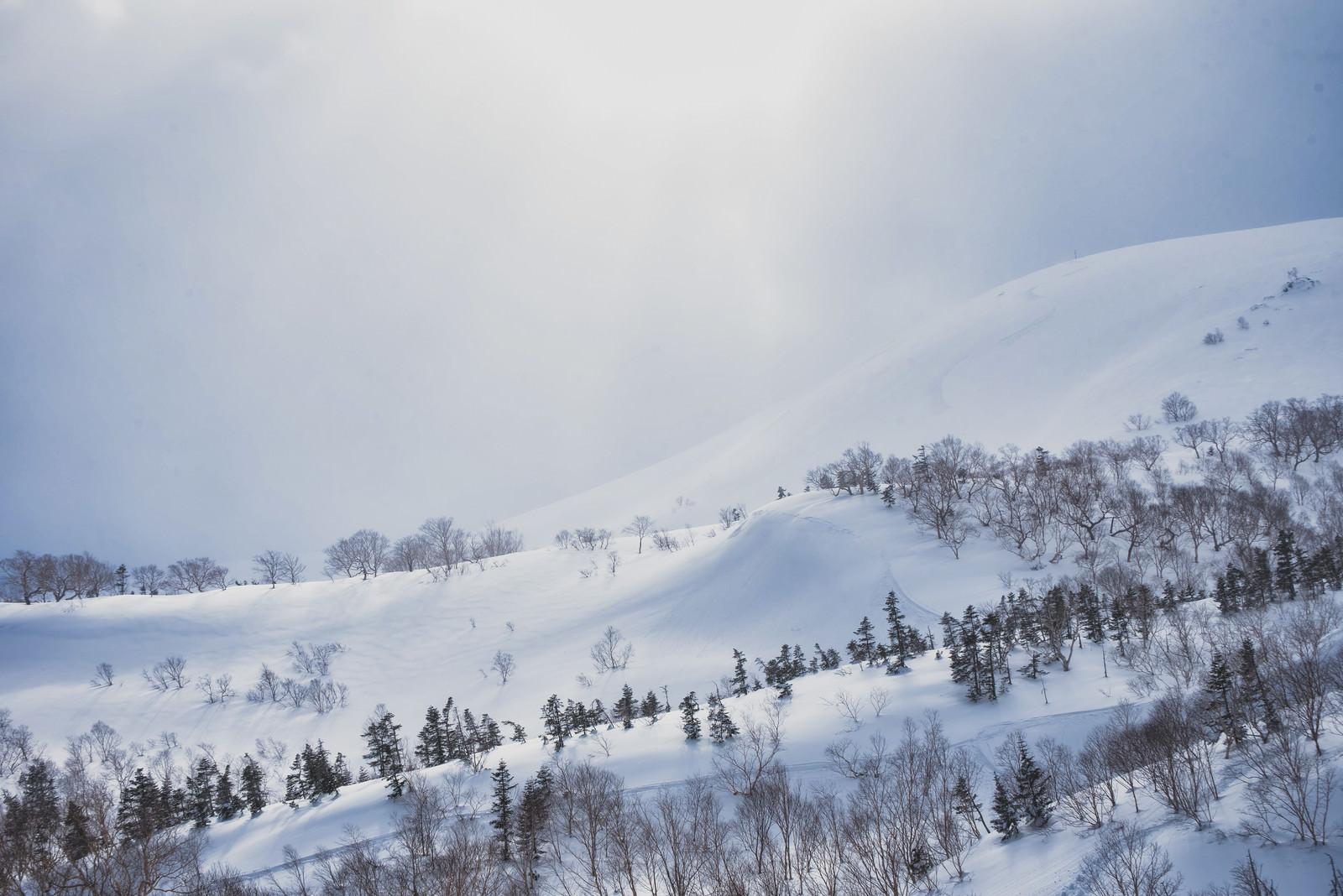 「日が差し込む冬の乗鞍高原(北アルプス)」の写真