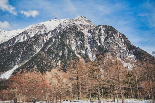 雪化粧した木々と明神岳の写真