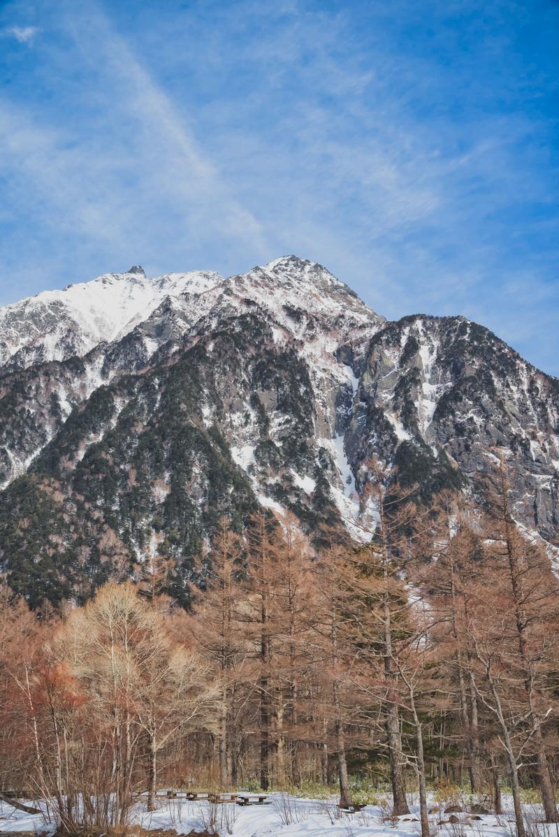 「麓の森越しに見る明神岳」の写真