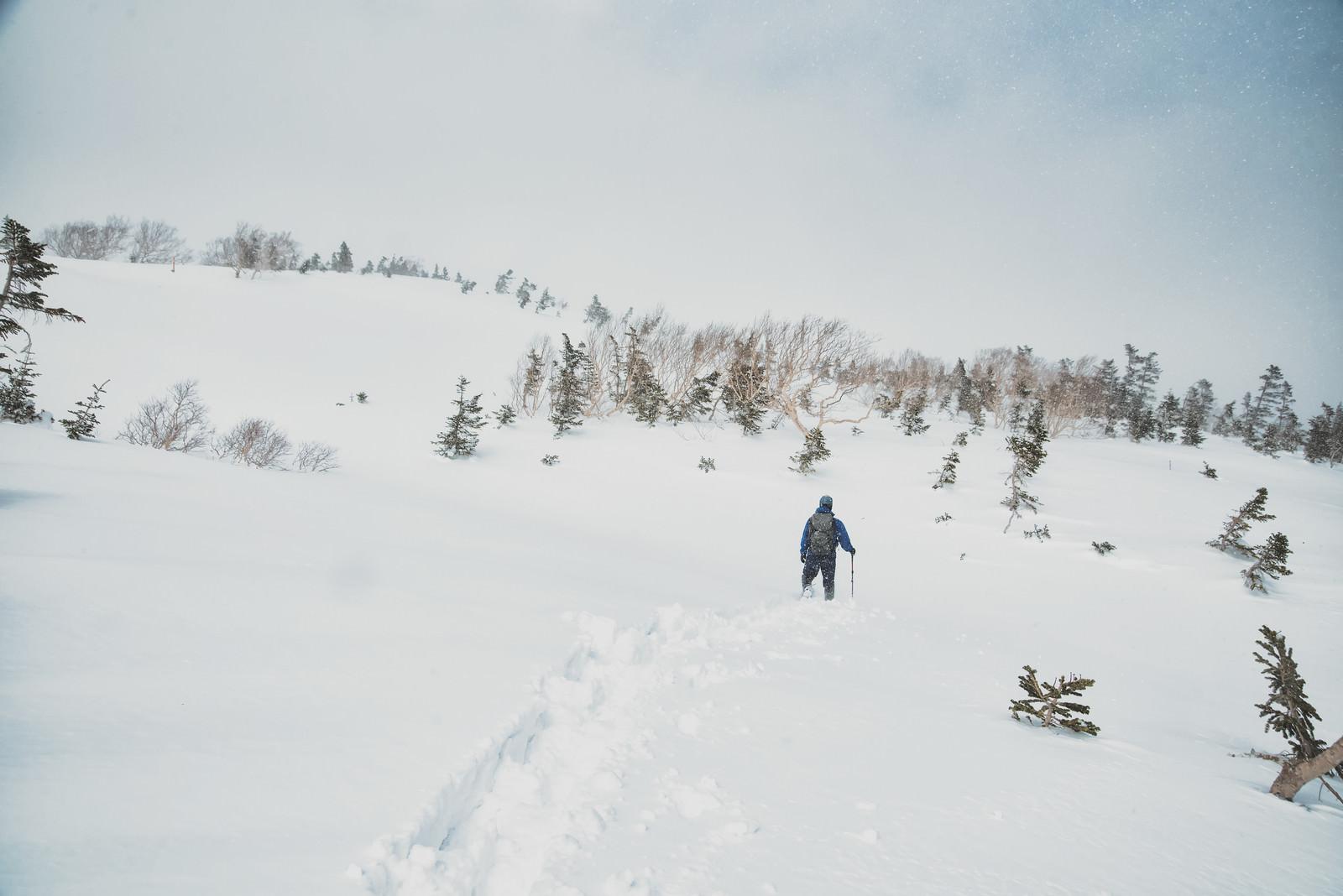 「雪深い雪原を進む登山者」の写真