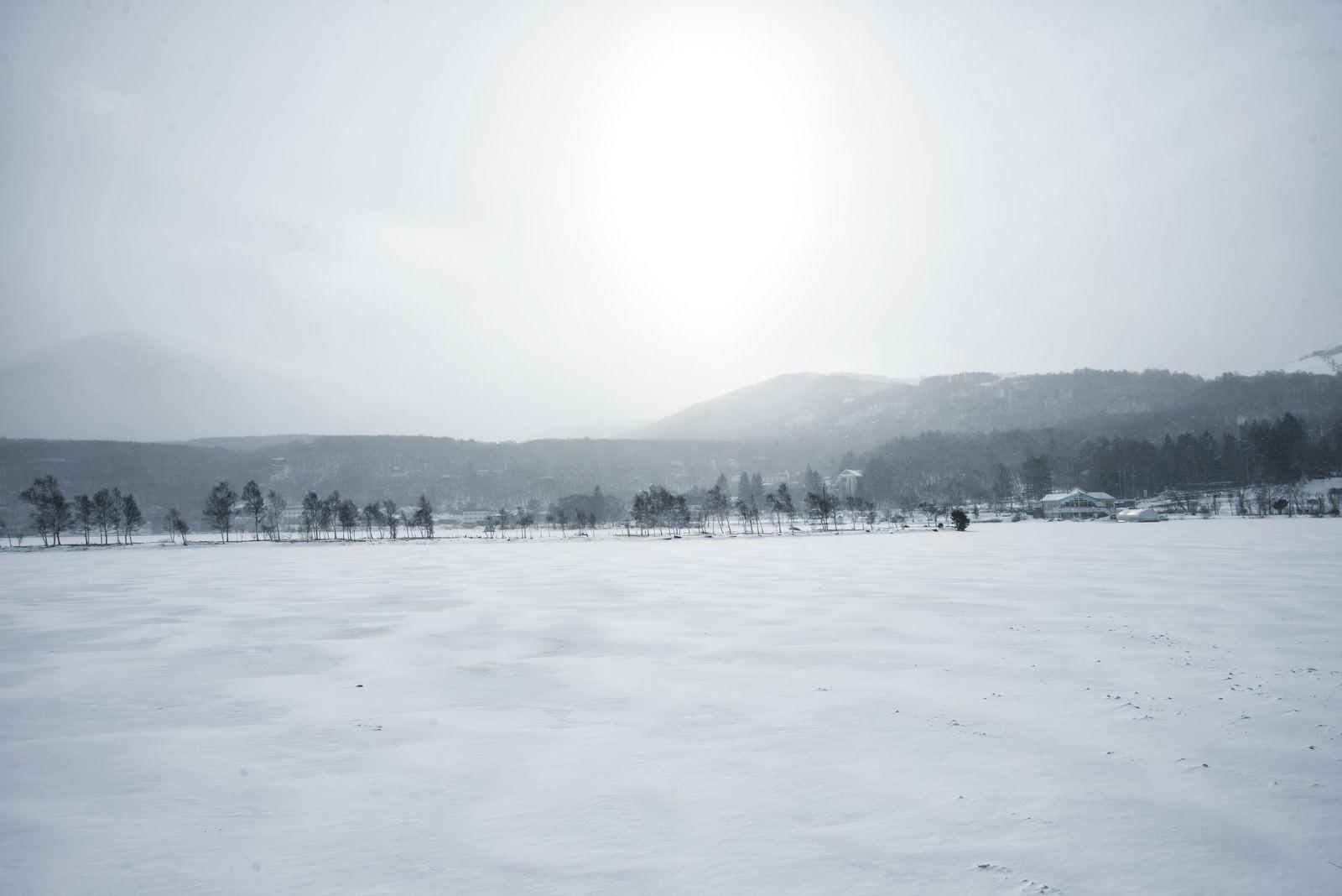 「凍結した白樺湖(しらかばこ)」の写真