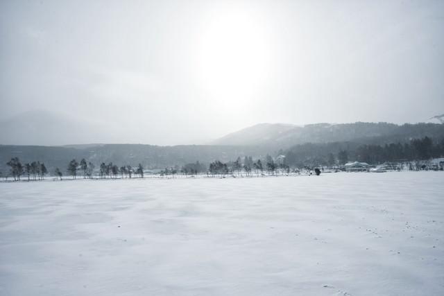 凍結した白樺湖(しらかばこ)の写真