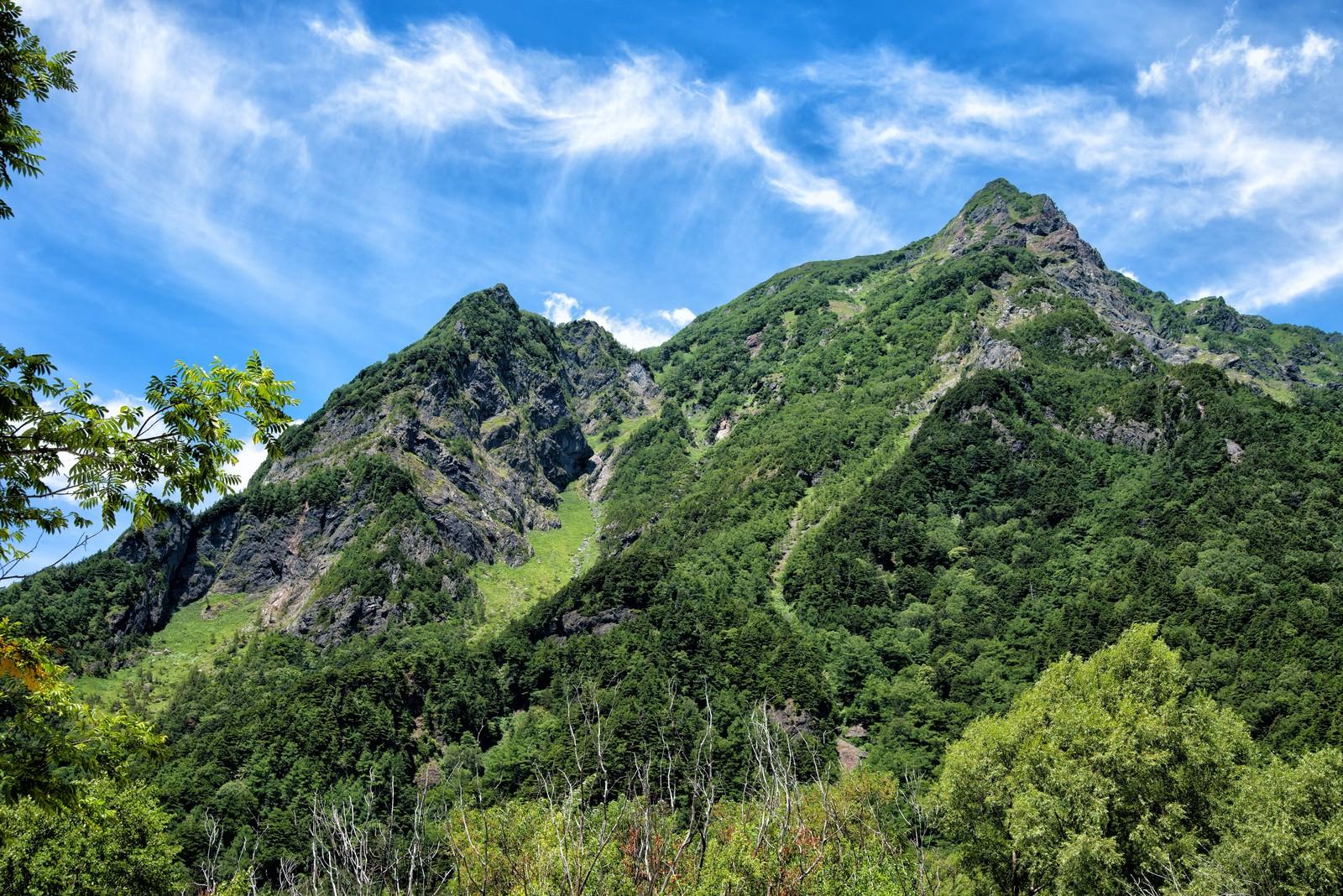 「上高地から見上げる明神岳の新緑」の写真