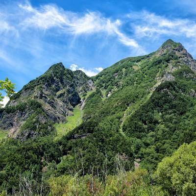 上高地から見上げる明神岳の新緑の写真