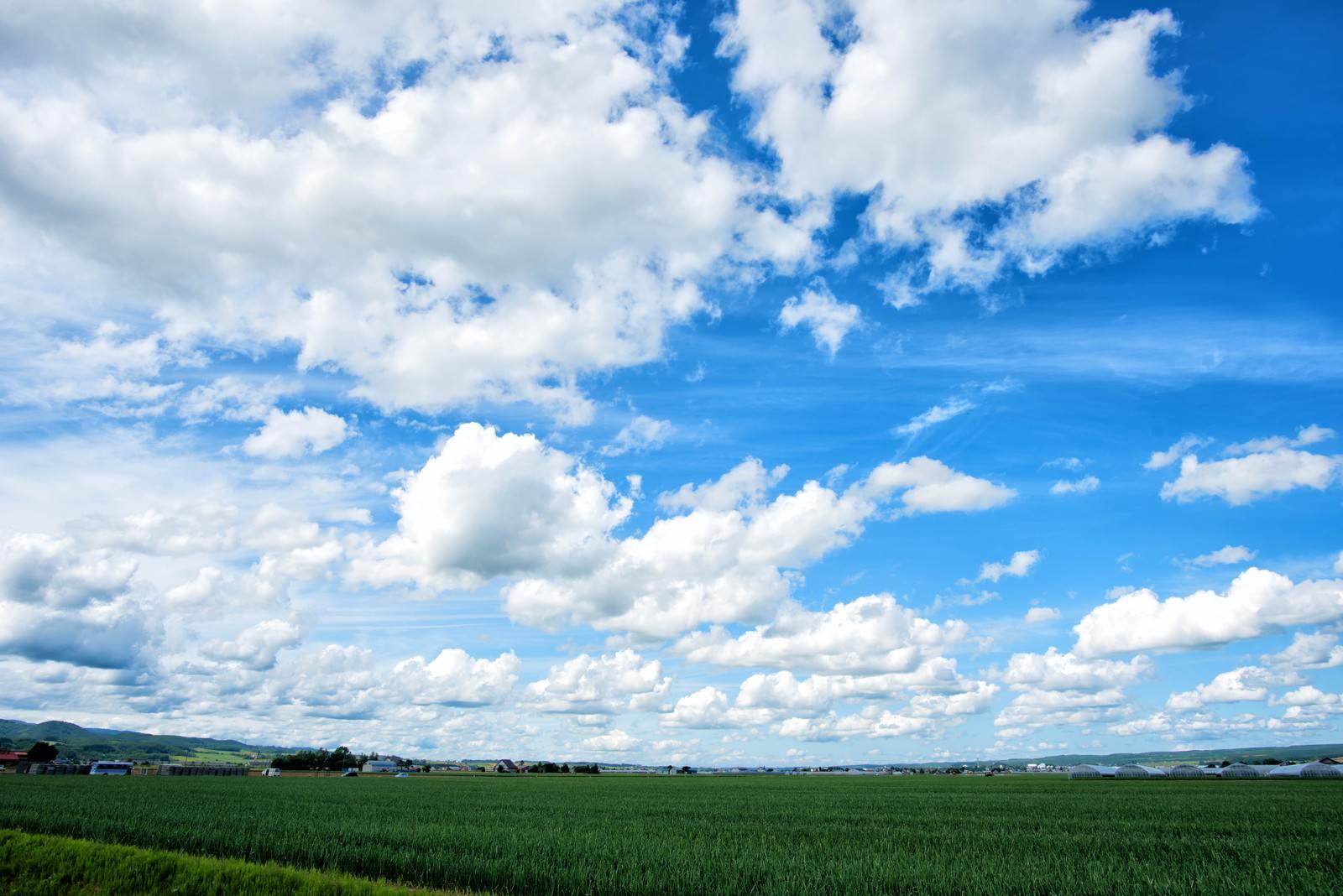 「北海道の広大な畑と空」の写真