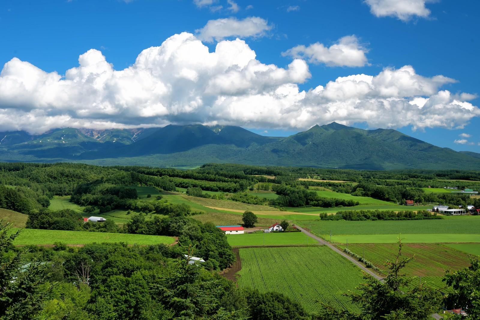 「十勝岳に広がる積雲」の写真