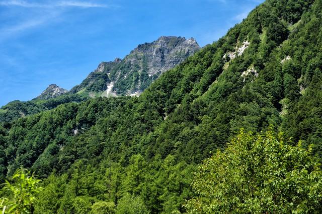 登山道から見える明神岳の岩壁の写真