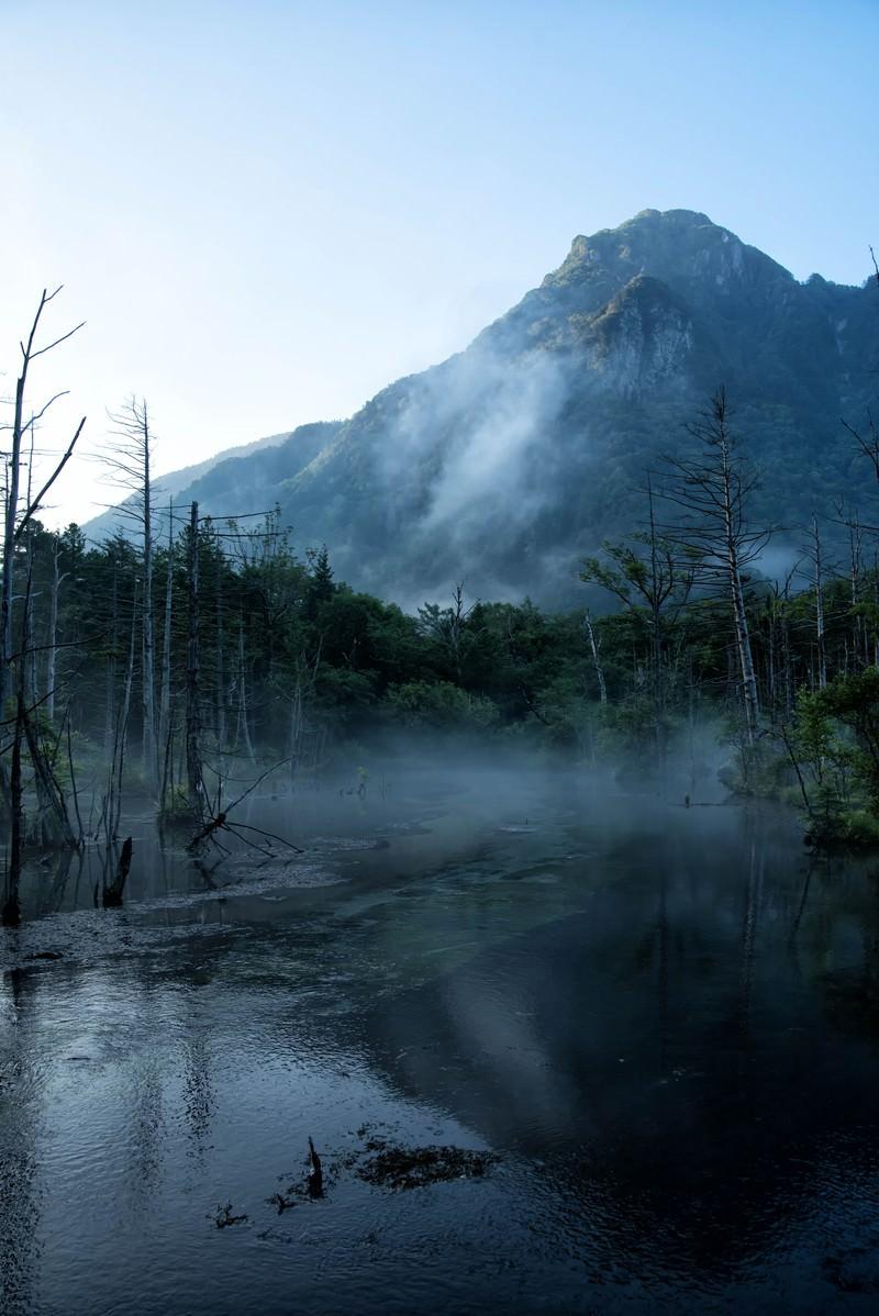 「朝霧に包まれる岳沢湿原と明神岳」の写真