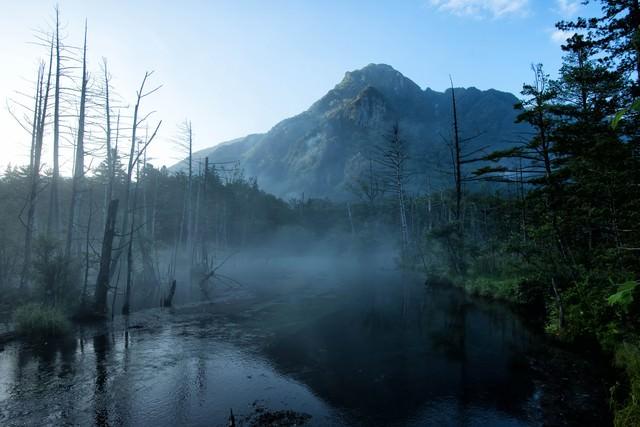 朝霧に包まれる岳沢湿原と明神岳の写真